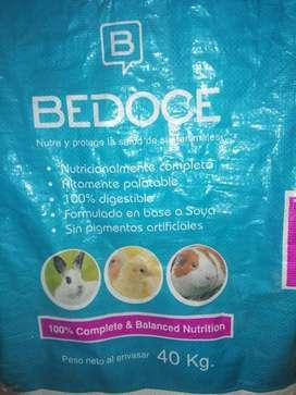 Conejina B12 Bedoce