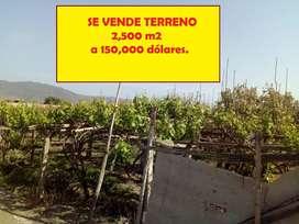 SE VENDE TERRENO DE 2500 METROS SAN VICENTE DE AZPITIA   MALA CAÑETE  ALADO DEL SARCAY DE AZPITIA
