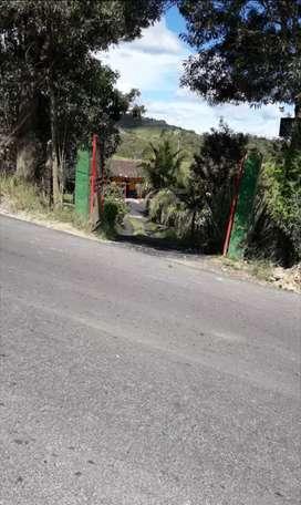 Venta de finca en el municipio de San Vicente Ferrer