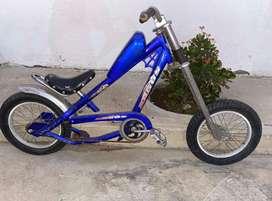 Bicicleta estilo moto