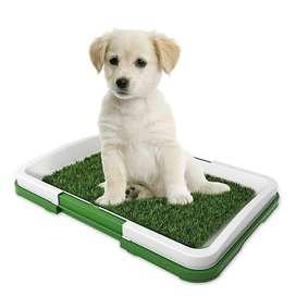 Tapete Baño Entrenador Para Mascota,pequeño Pets