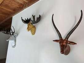 Cerámicas animales decoración pared