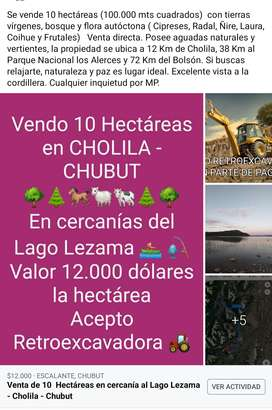 Venta 10 Hectáreas en la cordillera - Cholila - CHUBUT