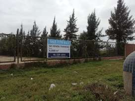 Venta de terreno en Chepén cerca al Tottus de la zona