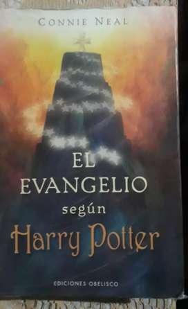 EL EVANGELIO SEGUN HARRY POTTER (usado)
