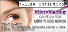 TALLER INTENSIVO MICROBLADING