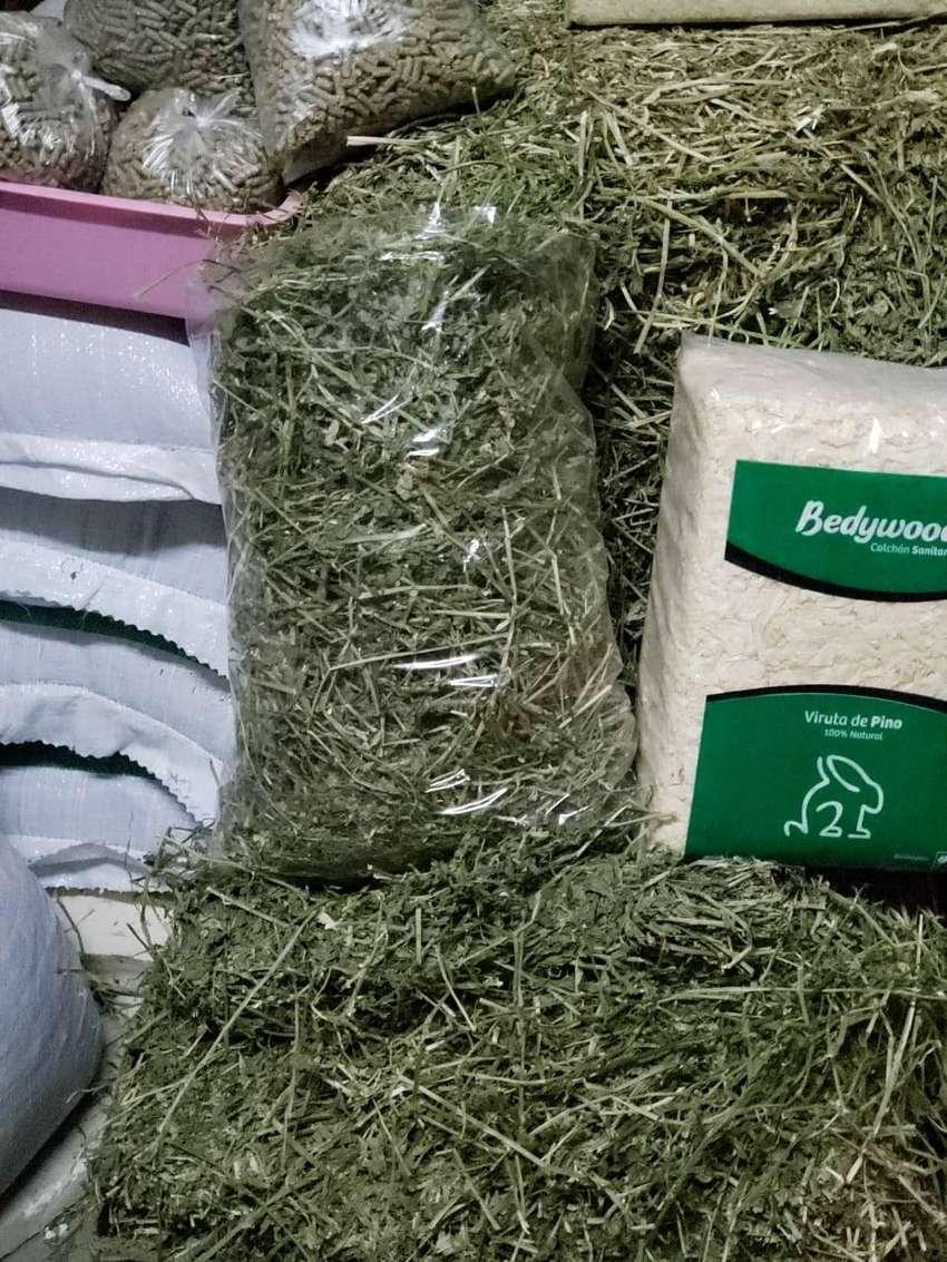 Heno alfalfa,conejin,viruta cobayos y conejos 0