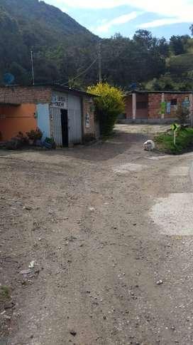 vendo finca de 7 hectáreas ubicada en la caldera,  municipio de mutiscua