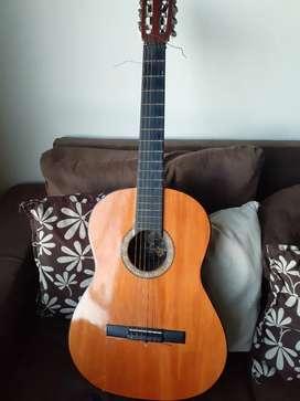 Guitarra acustica.