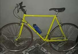 Vendo o permuto bici pistera