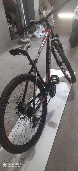 Aro 29_Bicicleta