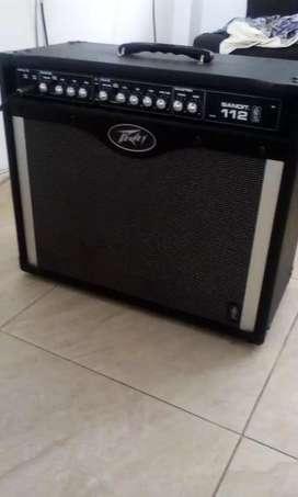 Planta de sonido para guitarra