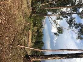 500 mts, en Zona Ecologica , casas de campo