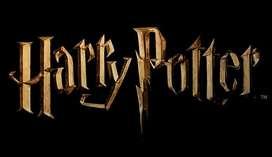 Accesorios Harry Potter