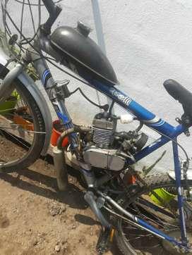 Bici moto tomaselli