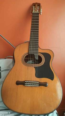Requinto profesional Guacan
