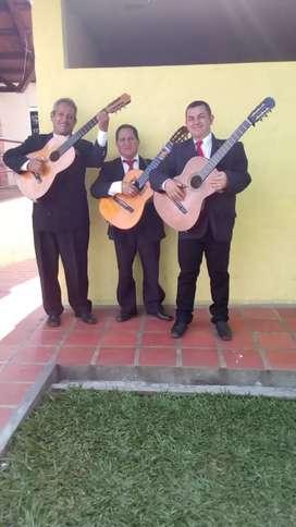 Serenatas de trío en Pereira.