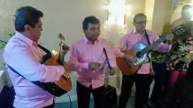 SERENATA DE SERENATAS TRIO MUSICAL
