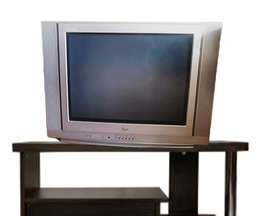 """Televisor de 21"""" en perfecto estado"""