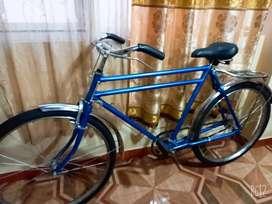 Bicicleta  balón  clasica
