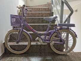 Bicicleta Monark original, modelo Optima Lexus