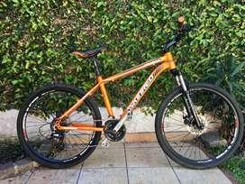 Mountain Bike Skinred Mohave V2
