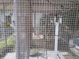 Se vende jaula para pájaros barato