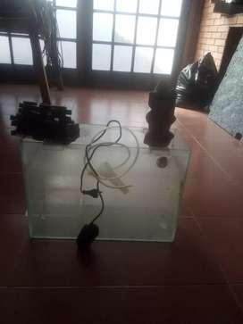 Pecera con accesorios