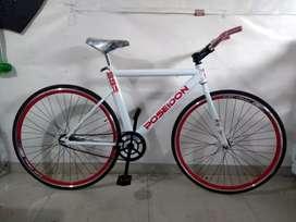 Bicicleta RIN 700