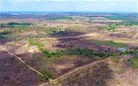 Se Venden 3 Lotes de Terreno en Brisas del Rio Daular