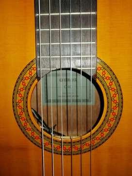 Guitarra Yamaha electroacústica C40