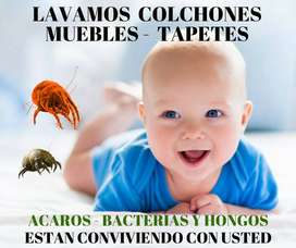LAVADO DE MUEBLES, COLCHONES, BOGOTA