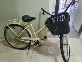 Bici playera perfecta