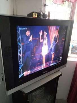 Se vende tv de 29 pulgadas