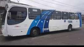 Buss urbano 110