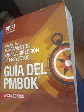 Guía Pmbok Original en español