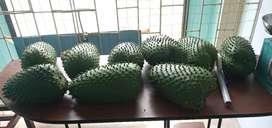 Guanábana 100% orgánica