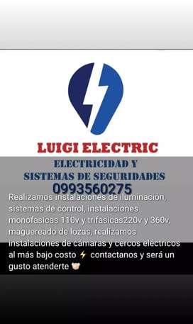 Luigi electric