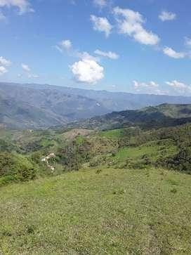 vendo-cambio Finca en Barbosa-Antioquia