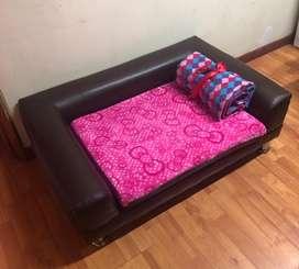 Sofa y cama para perro