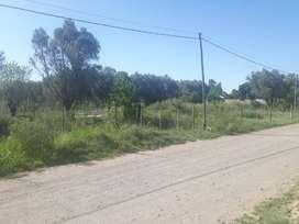 TERRENO 1000 M2 RIVADAVIA MEDOZA ,  oferta contado 1.800.000 pesos
