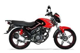 Alquiler venta moto wanxin 7h caiman.