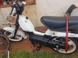 Zanella70cc
