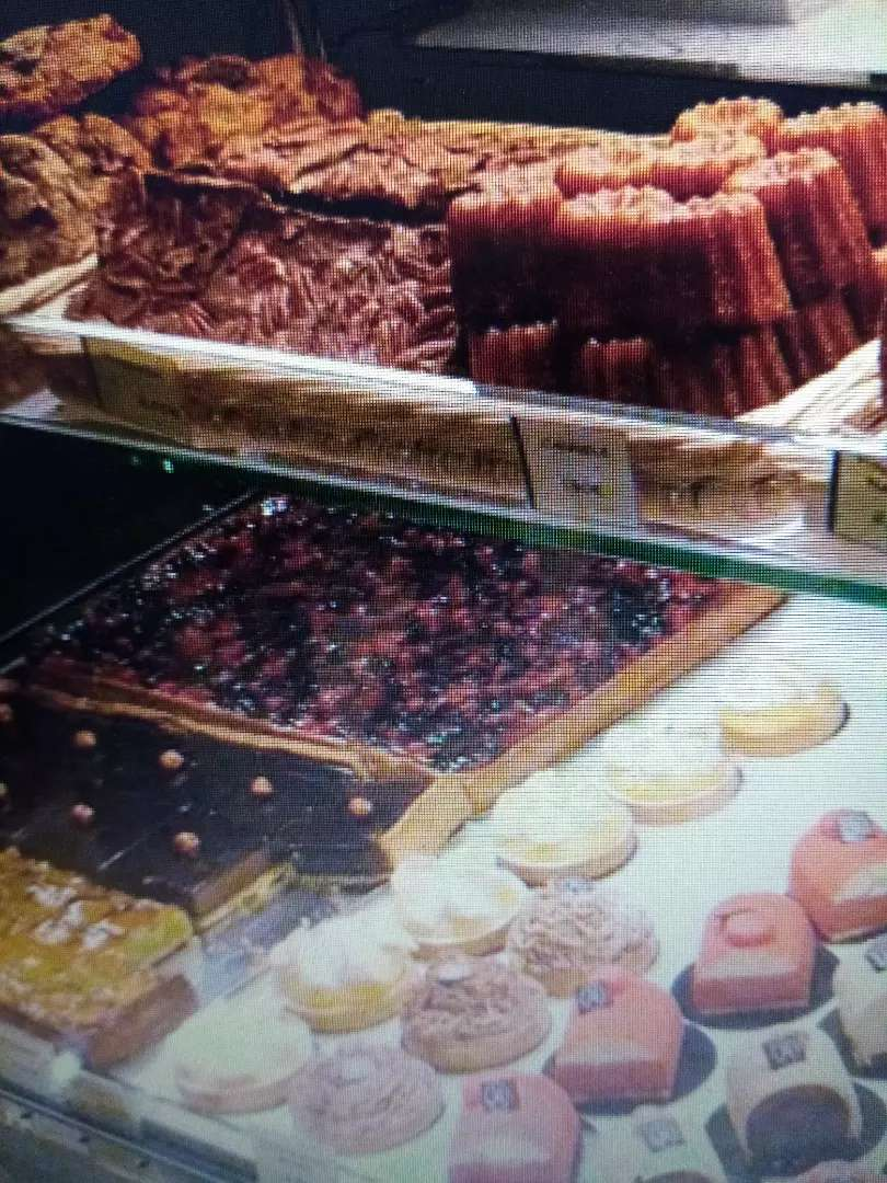 Busco pastelero - panadero