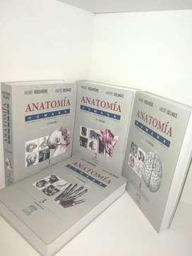 Anatomia Humana Rouviere 11va Edicion  4tomos