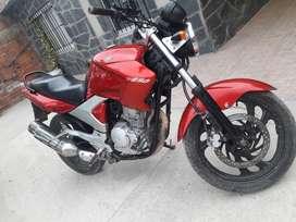 Yamaha 250 Feizer