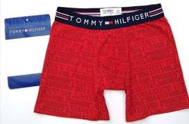 Boxer Tommy