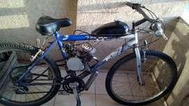 Bici Moto 80cc.