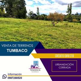 Venta de terrenos en Tumbaco