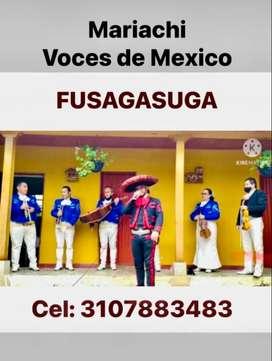 MARIACHI VOCES DE MEXICO FUSAGASUGA Y ALREDEDORES